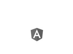 angularjs5