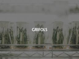 Grifols arquitectura de software