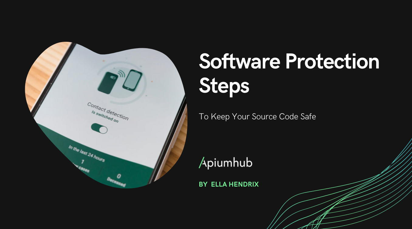 Software Protection Steps